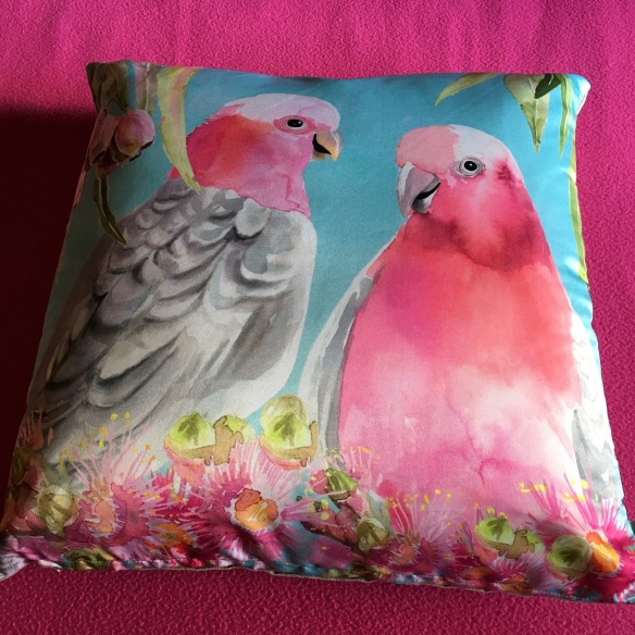 Galah cushion