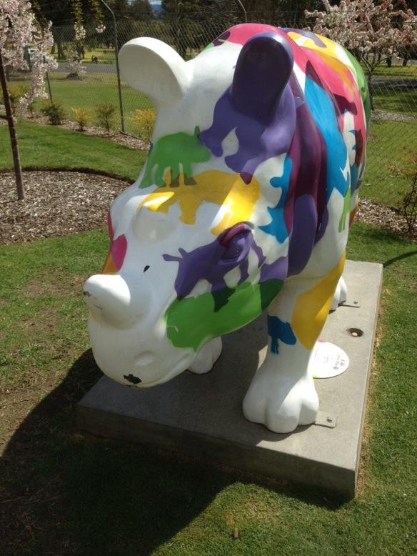 Rhino at Cowra