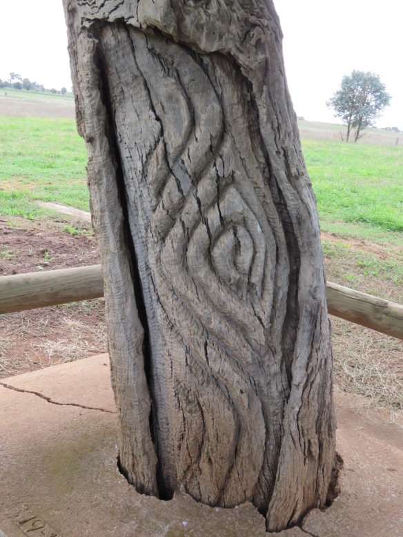 Carved tree, Yuranigh's grave, Molong