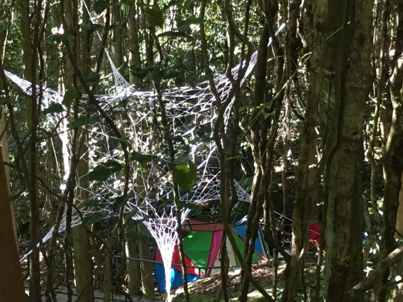 3D Webs by Louisa Magrics with La Subida Rhizome (The Rise Rhizome) by Miguel Valenzuela & Francois Limondin in background