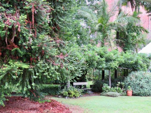 Hambledon Cottage garden