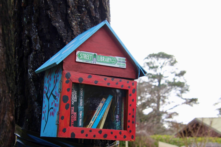 Street libraries offering something for the passing reader